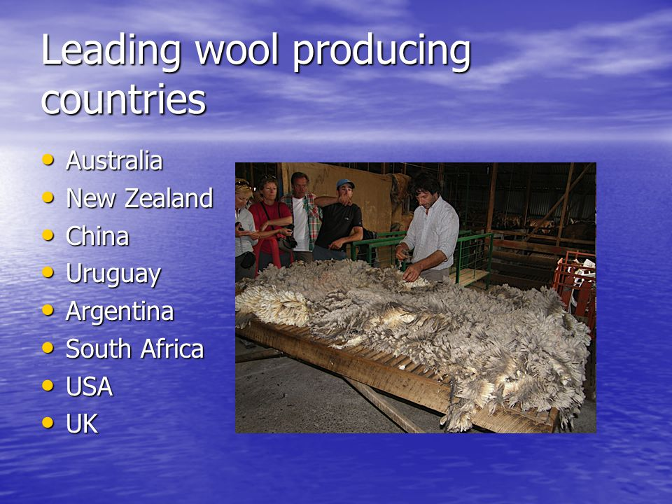 Leading wool producing countries
