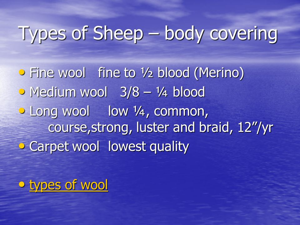 Types of Sheep – body covering