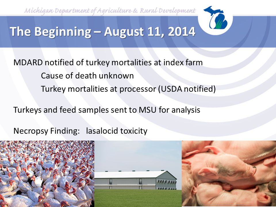 The Beginning – August 11, 2014 MDARD notified of turkey mortalities at index farm. Cause of death unknown.