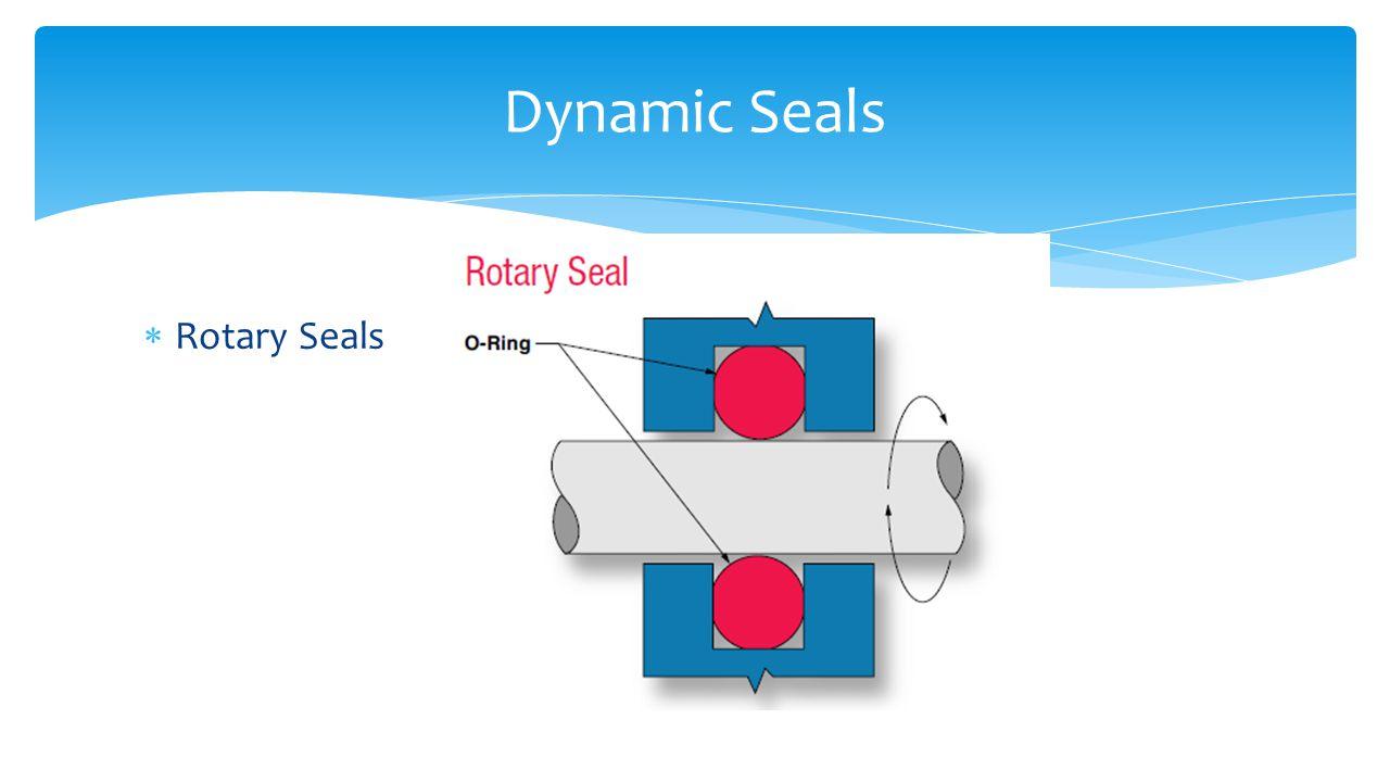 Dynamic Seals Rotary Seals