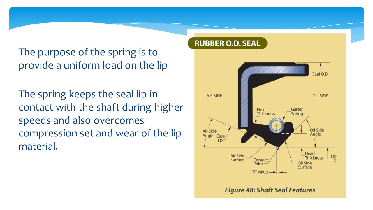 The purpose of the spring is to provide a uniform load on the lip