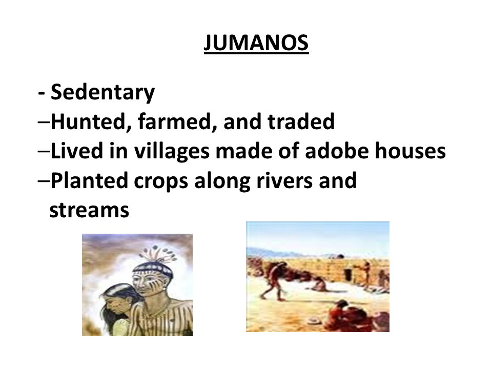 JUMANOS - Sedentary. –Hunted, farmed, and traded. –Lived in villages made of adobe houses. –Planted crops along rivers and.
