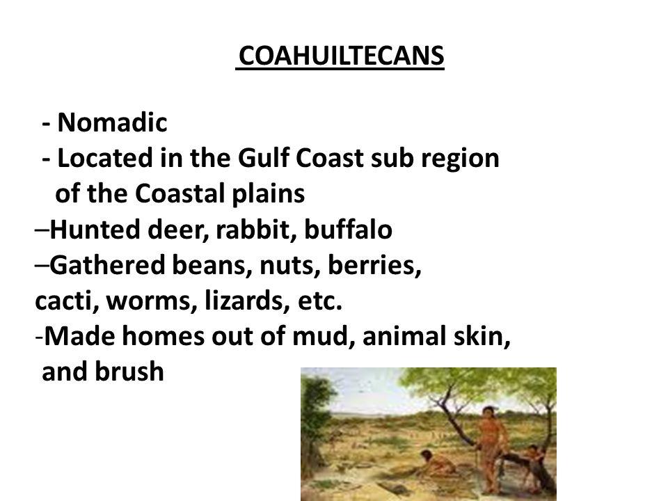 - Located in the Gulf Coast sub region of the Coastal plains