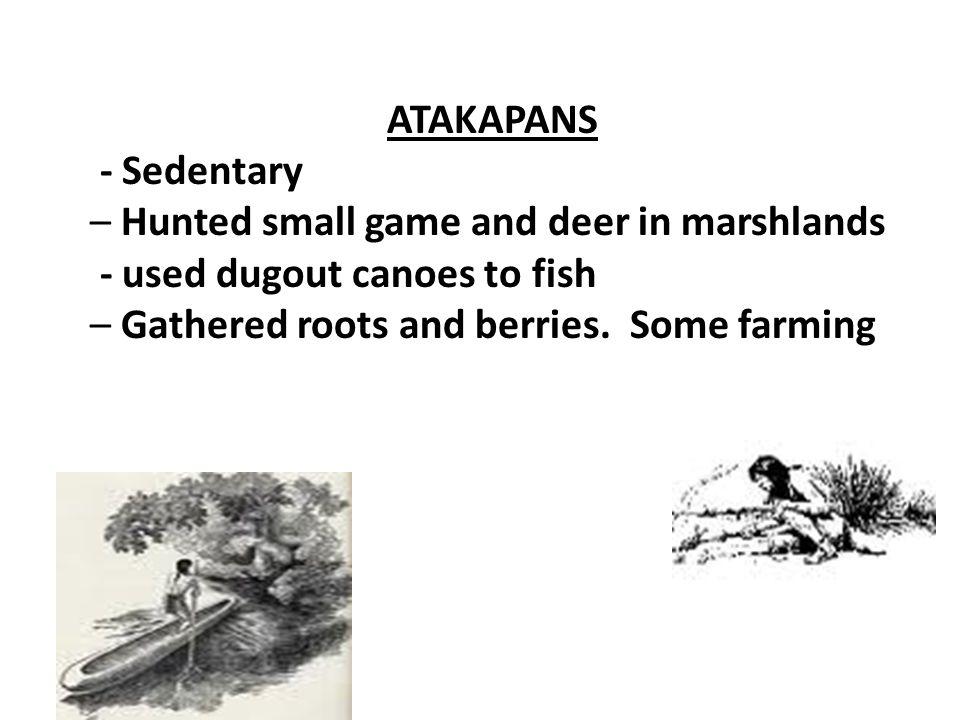 ATAKAPANS - Sedentary. – Hunted small game and deer in marshlands.