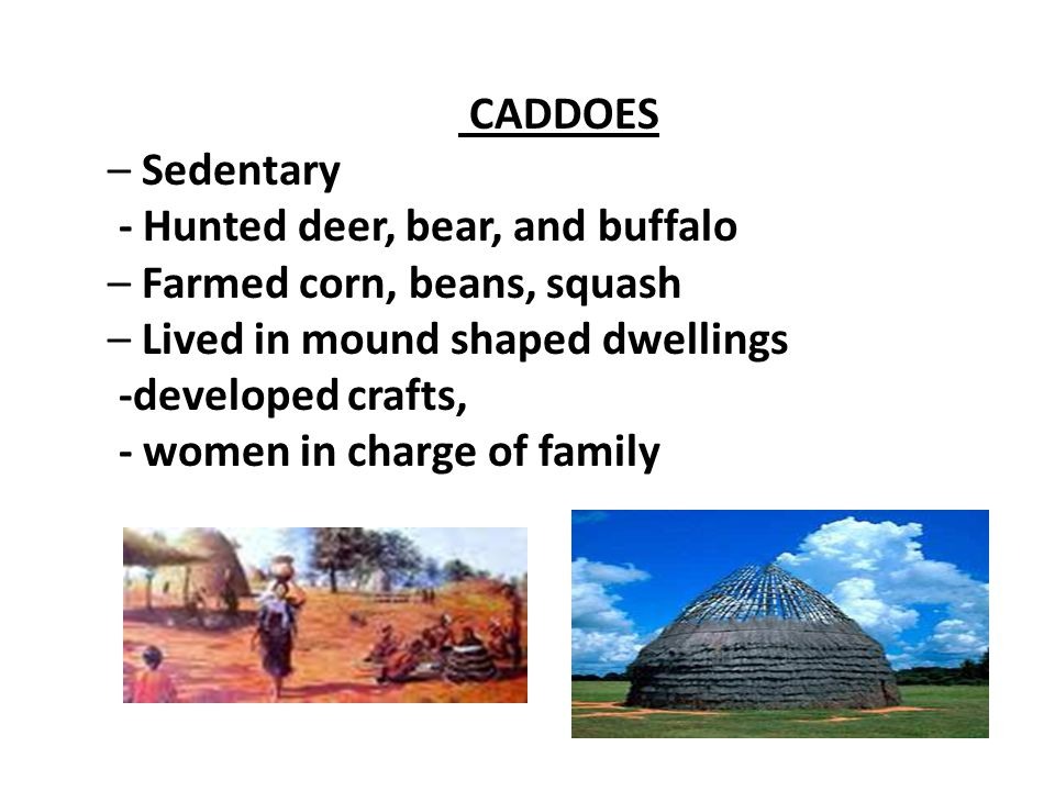 CADDOES – Sedentary. - Hunted deer, bear, and buffalo. – Farmed corn, beans, squash. – Lived in mound shaped dwellings.