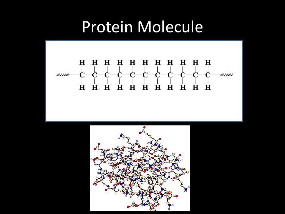 macromolecules for identification