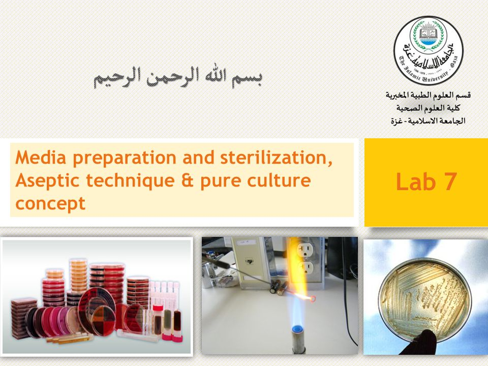 Media preparation and sterilization, Aseptic technique & pure culture concept