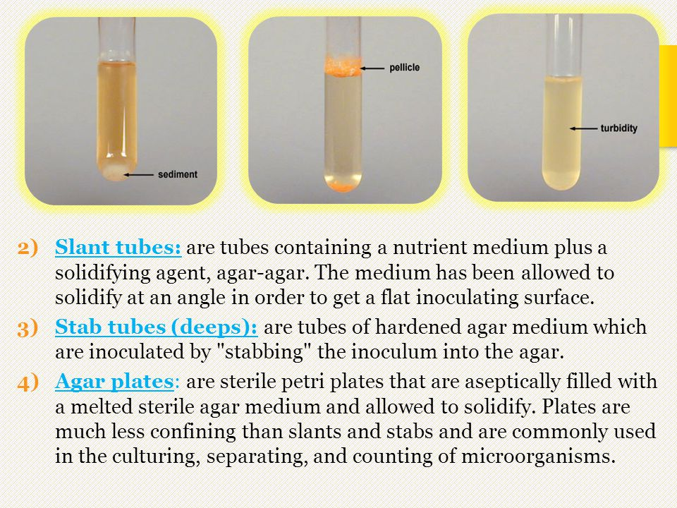 Slant tubes: are tubes containing a nutrient medium plus a solidifying agent, agar-agar. The medium has been allowed to solidify at an angle in order to get a flat inoculating surface.