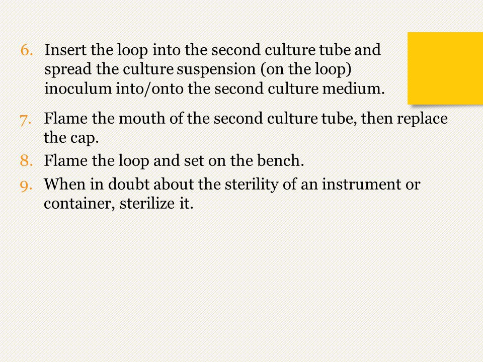 Insert the loop into the second culture tube and spread the culture suspension (on the loop) inoculum into/onto the second culture medium.