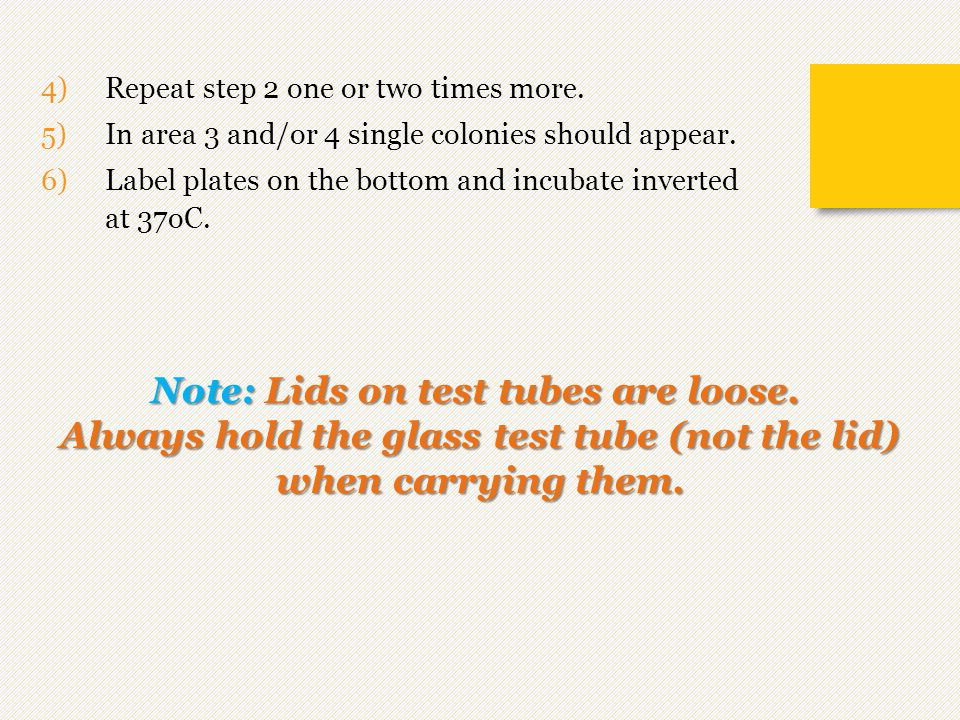 Note: Lids on test tubes are loose.