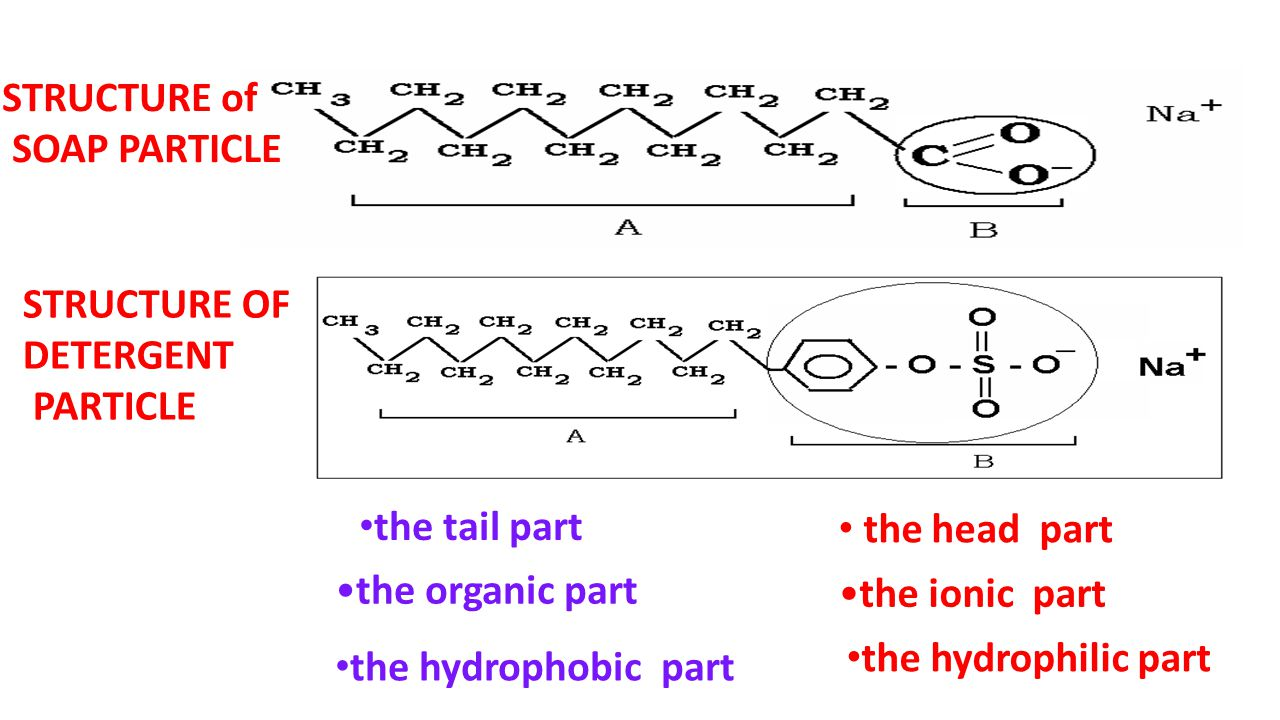 STRUCTURE of SOAP PARTICLE. STRUCTURE OF. DETERGENT. PARTICLE. the tail part. the head part. the organic part.