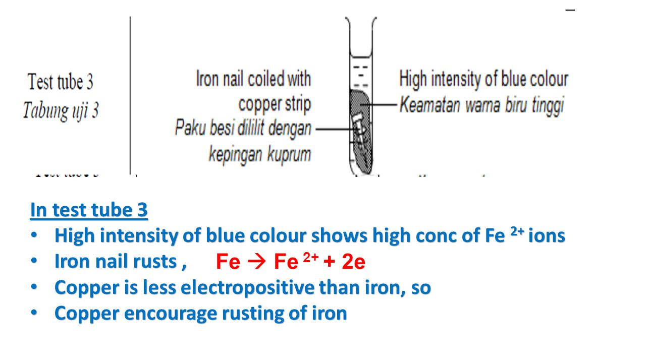 In test tube 3 High intensity of blue colour shows high conc of Fe 2+ ions. Iron nail rusts , Copper is less electropositive than iron, so.
