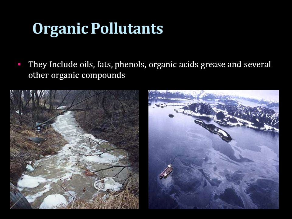 Organic Pollutants They Include oils, fats, phenols, organic acids grease and several other organic compounds.
