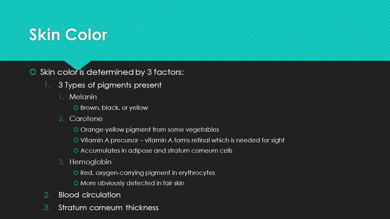 Skin Color Skin color is determined by 3 factors:
