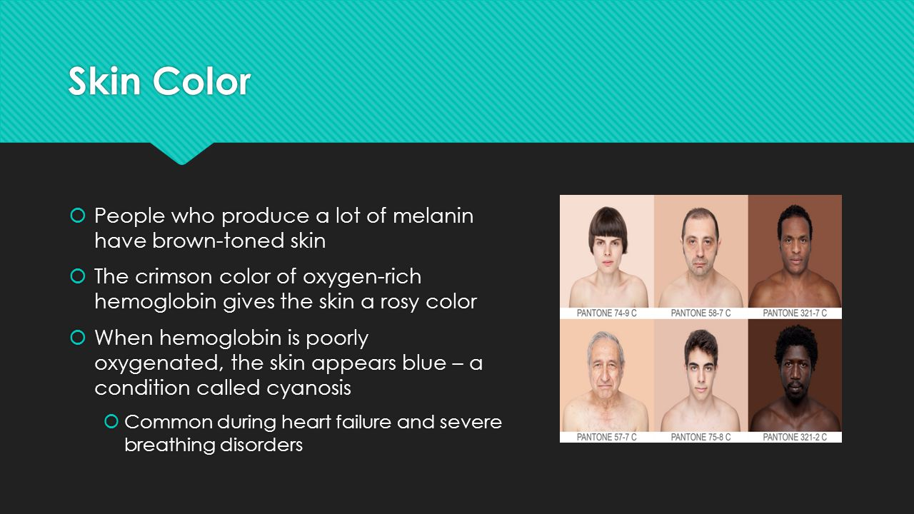 Skin Color People who produce a lot of melanin have brown-toned skin