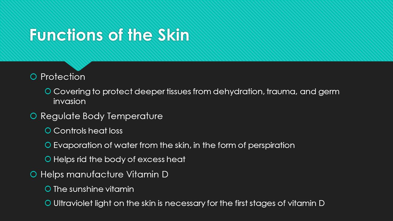 Functions of the Skin Protection Regulate Body Temperature
