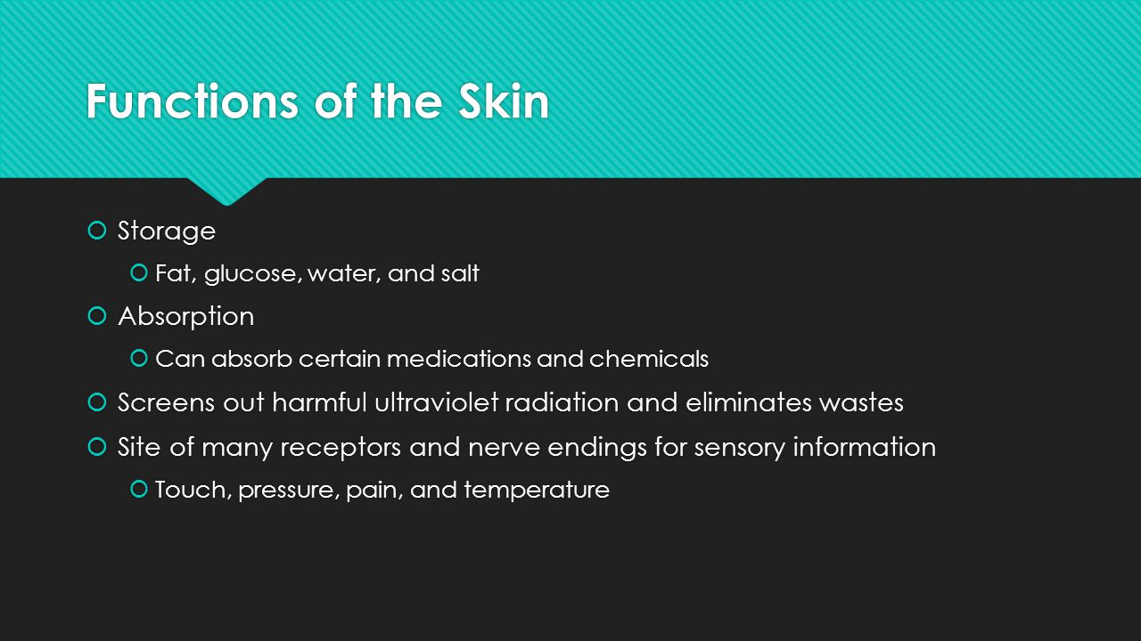 Functions of the Skin Storage Absorption