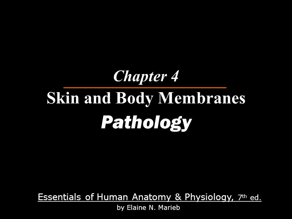 Chapter 4 Skin and Body Membranes Pathology