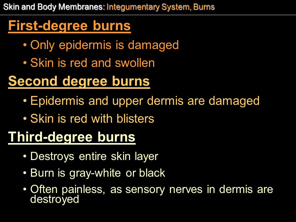 First-degree burns Second degree burns Third-degree burns