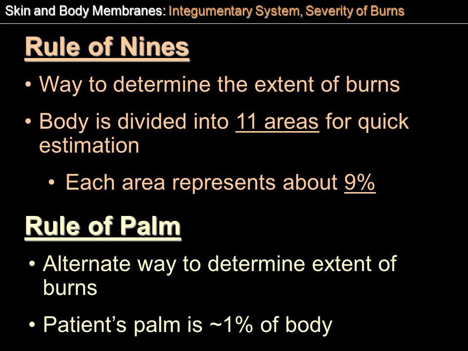 Rule of Nines Rule of Palm Way to determine the extent of burns