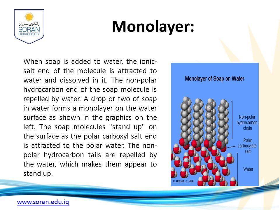 Monolayer: