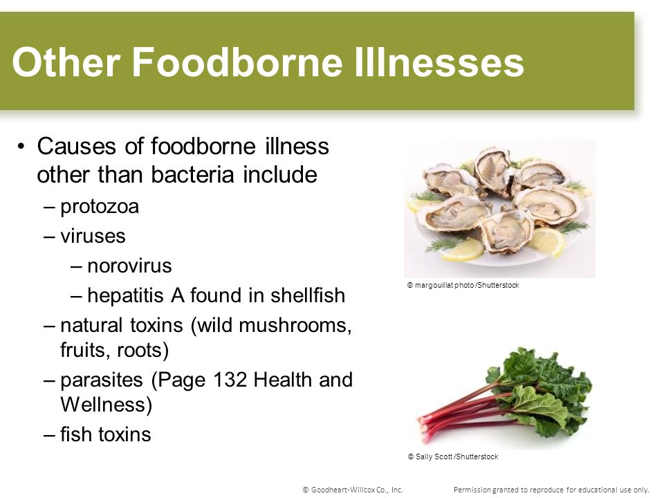 sci 163 food illness norovirus Norovirus in retail shellfish norovirus is a common cause of gastroenteritis outbreaks like virus in imported clams associated with food-borne illness.
