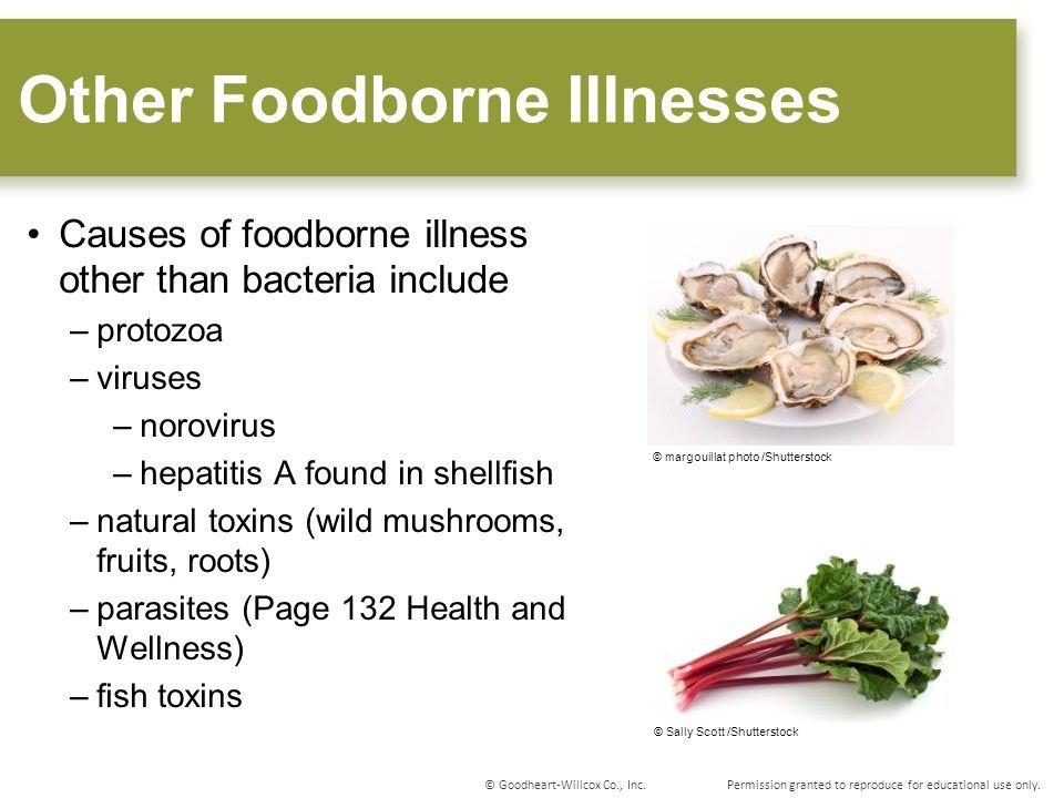 Other Foodborne Illnesses