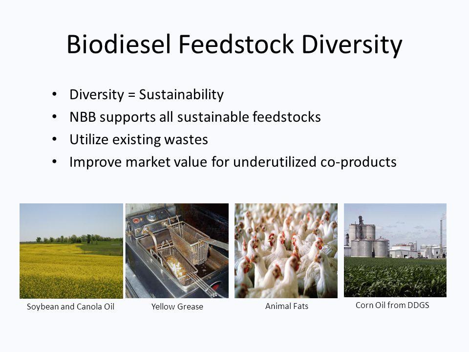 Biodiesel Feedstock Diversity