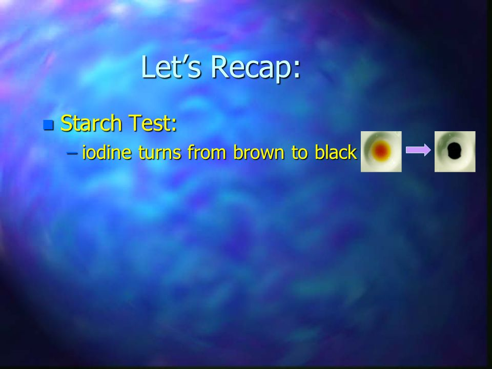 Let's Recap: Starch Test: iodine turns from brown to black
