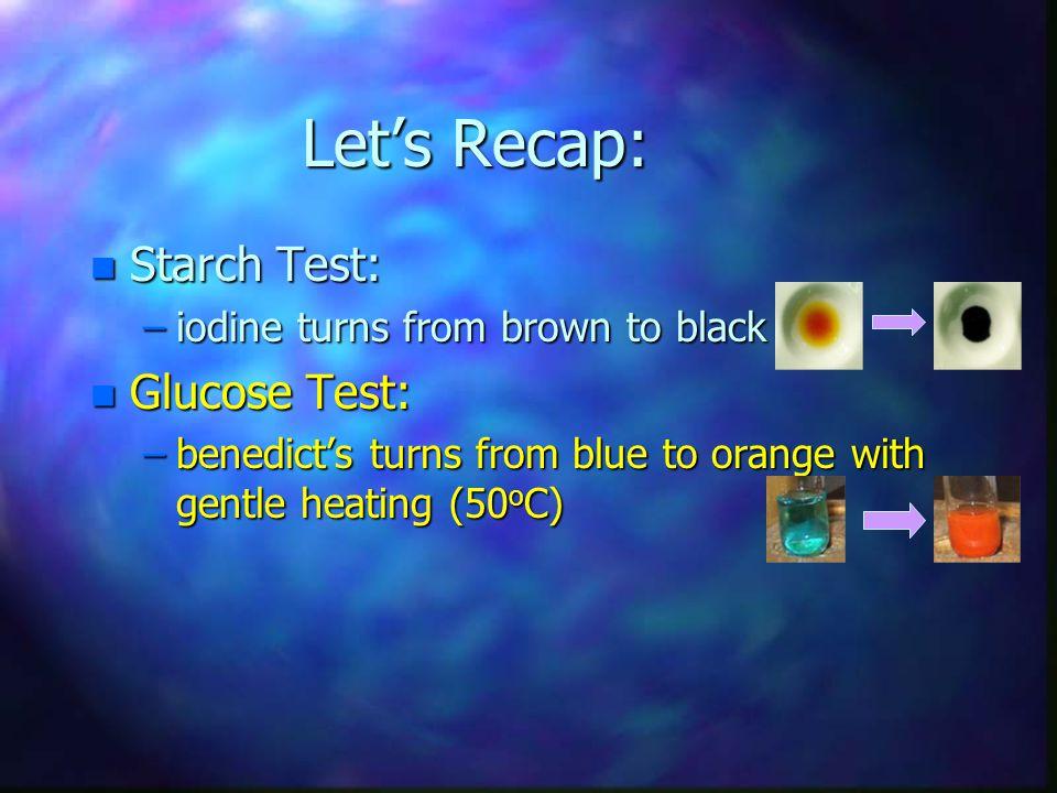 Let's Recap: Starch Test: Glucose Test: