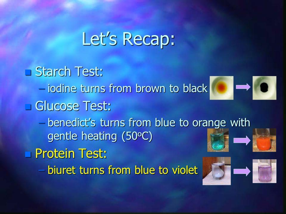 Let's Recap: Starch Test: Glucose Test: Protein Test: