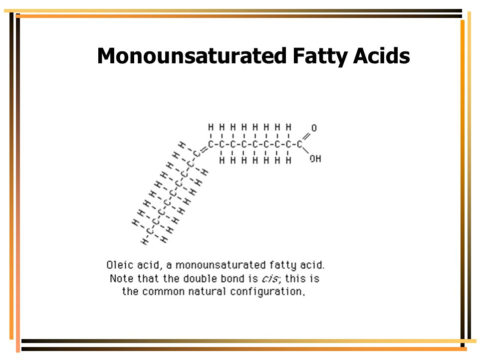 Monounsaturated Fatty Acids