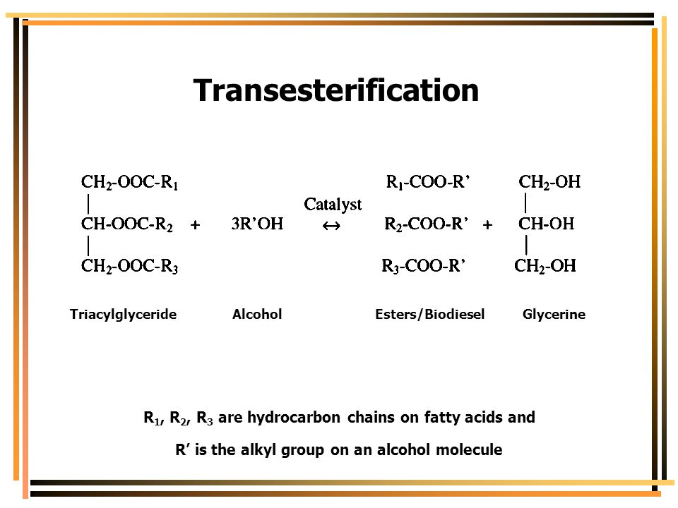 Transesterification Triacylglyceride Alcohol Esters/Biodiesel Glycerine.
