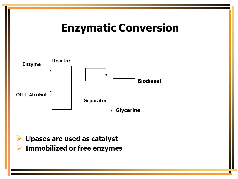 Enzymatic Conversion Lipases are used as catalyst