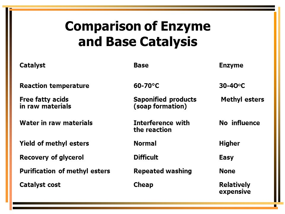 Comparison of Enzyme and Base Catalysis