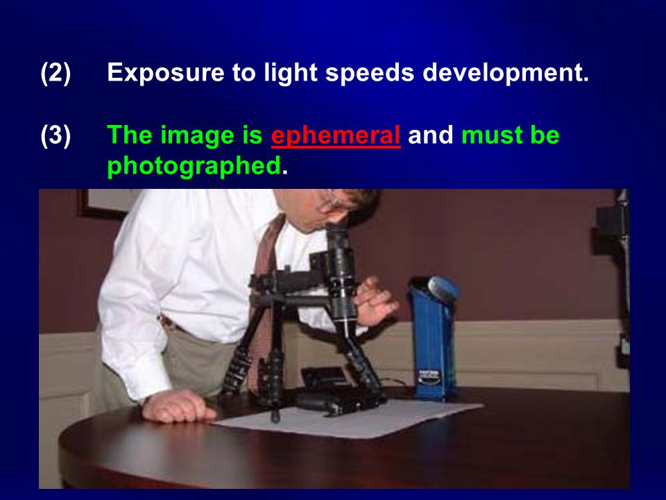 (2). Exposure to light speeds development. (3)