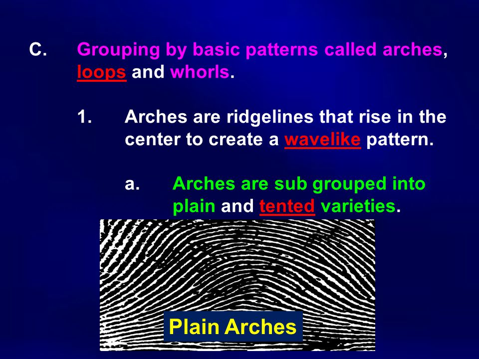 C. Grouping by basic patterns called arches,. loops and whorls. 1