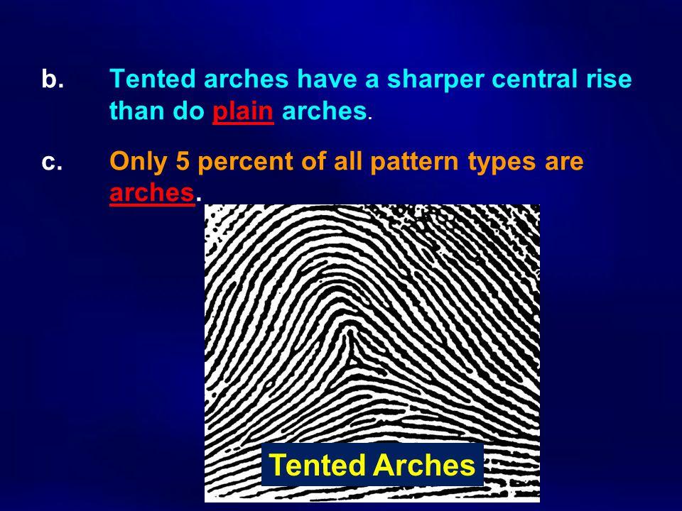 b. Tented arches have a sharper central rise. than do plain arches. c