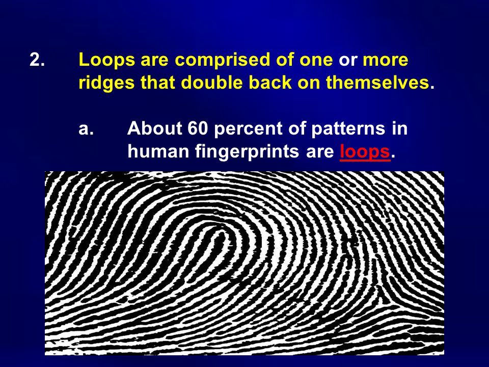 2. Loops are comprised of one or more