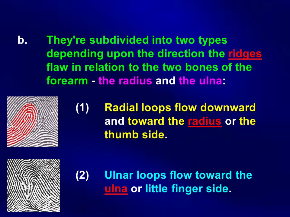 b. They re subdivided into two types