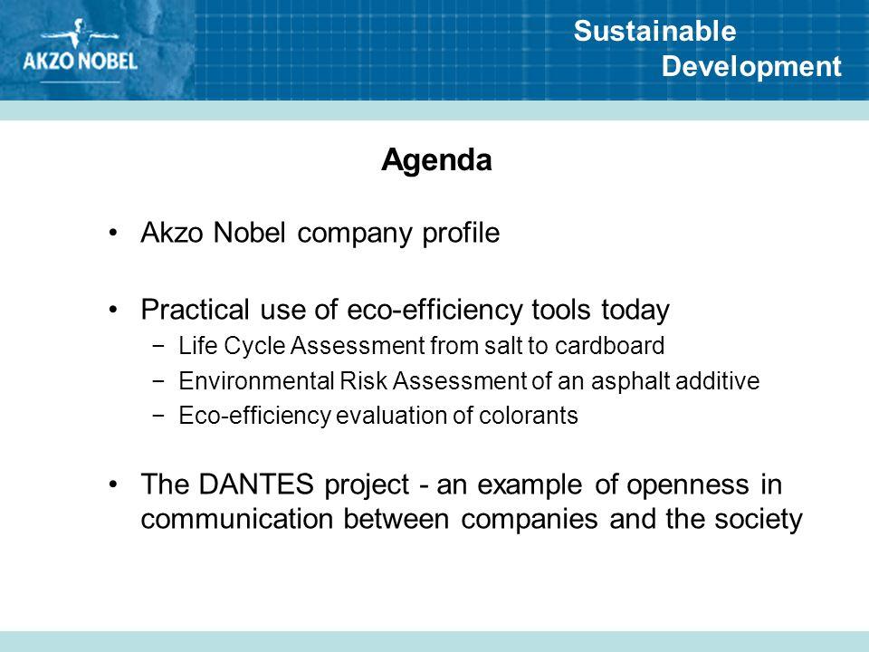 Agenda Akzo Nobel company profile