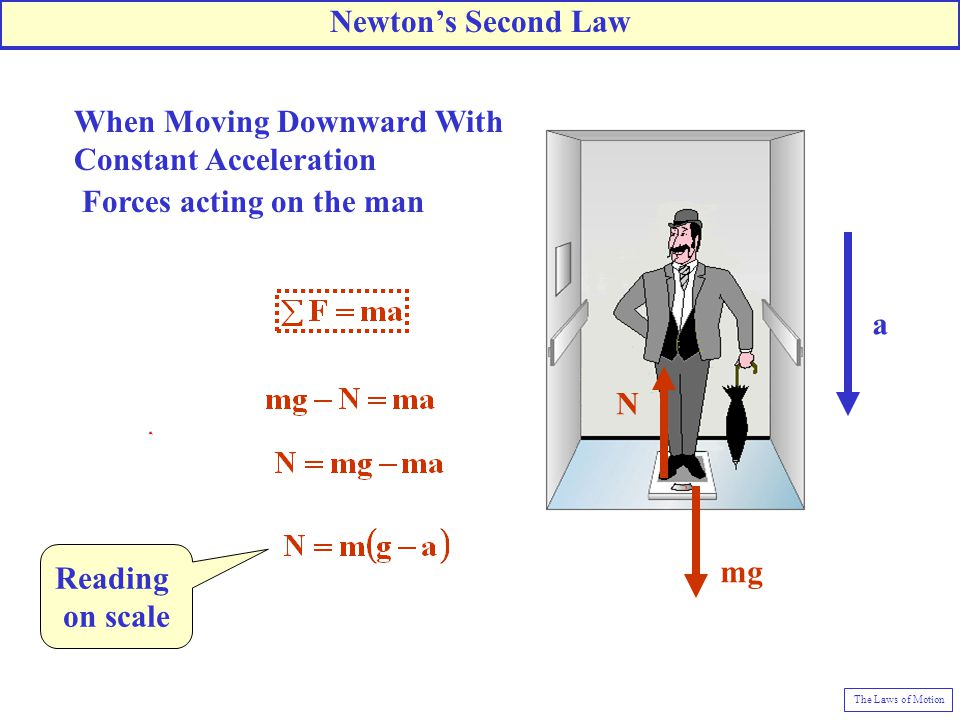 Newton's Second Law Reading on scale
