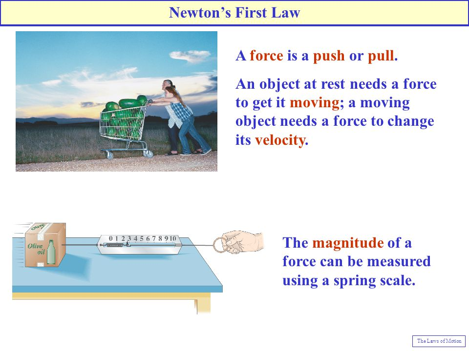 The magnitude of a force can be measured using a spring scale.