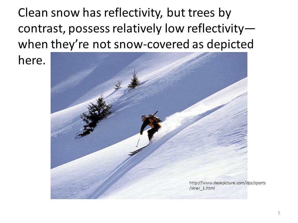 Clean snow has reflectivity, but trees by contrast, possess relatively low reflectivity—when they're not snow-covered as depicted here.