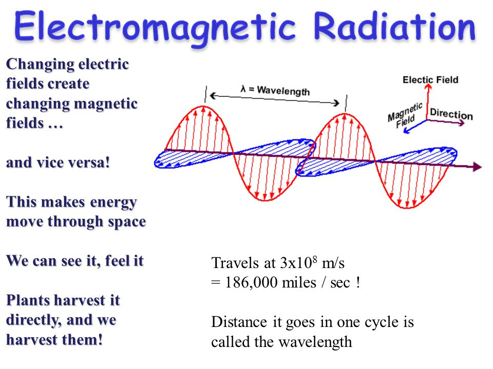 the effects of electro magnetic fields on our lives The sun is crucial to life on earth besides the obvious ways in which it affects us, its influence on our lives might be stronger than expected scientists are only just learning of the startling implications of the sun's roughly 11-year cycle, the dramatic increase in sunspots in recent times .