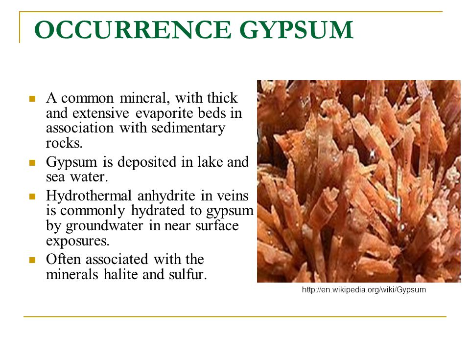 OCCURRENCE GYPSUM A common mineral, with thick and extensive evaporite beds in association with sedimentary rocks.
