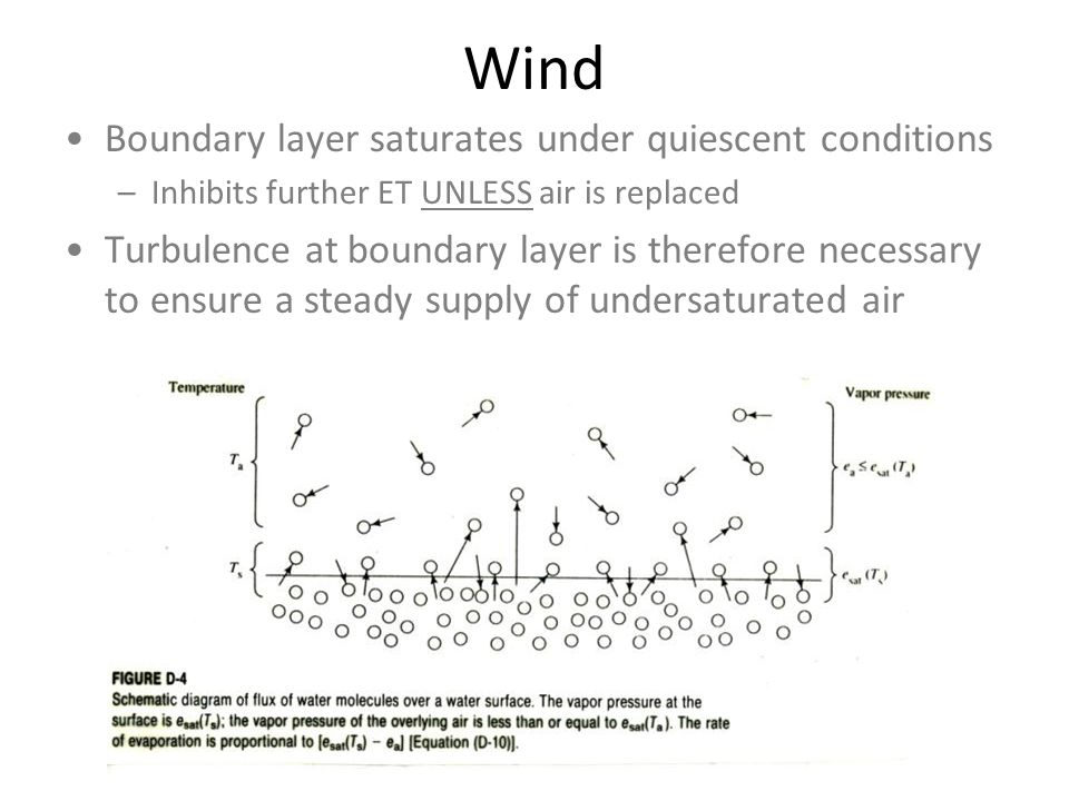 Wind Boundary layer saturates under quiescent conditions