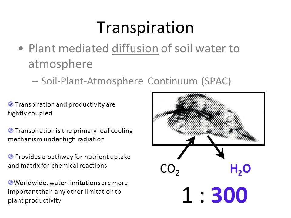 Transpiration Plant mediated diffusion of soil water to atmosphere. Soil-Plant-Atmosphere Continuum (SPAC)