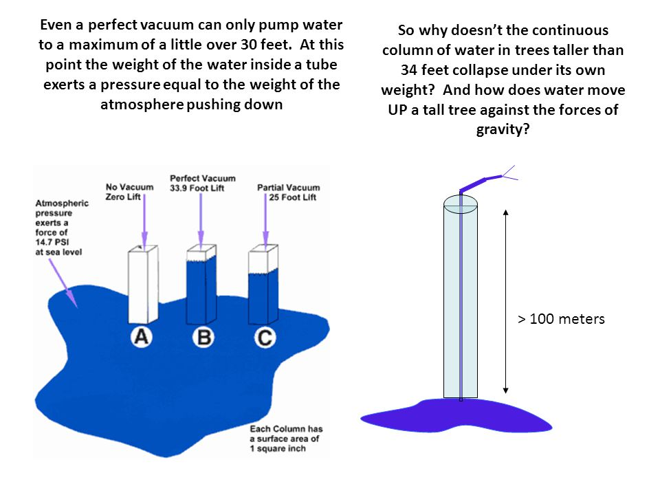 Even a perfect vacuum can only pump water to a maximum of a little over 30 feet. At this point the weight of the water inside a tube exerts a pressure equal to the weight of the atmosphere pushing down