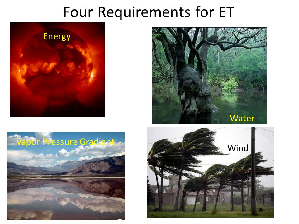 Four Requirements for ET